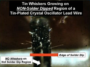 Tin Whiskers growing on non-solder dipped region